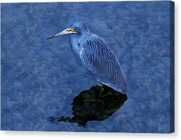 Heron Canvas Print by Paulette Thomas