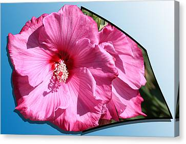 Hibiscus Canvas Print by Shane Bechler