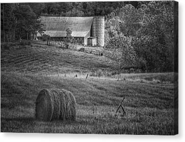 Hidden Away In Black And White Canvas Print by Mary Timman