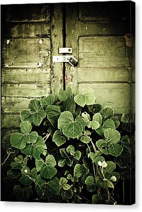 Hidden Nature Canvas Print by Jessica Brawley