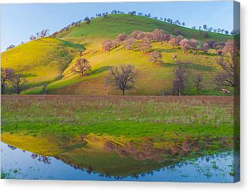 Hill Reflection In Pond Canvas Print by Marc Crumpler