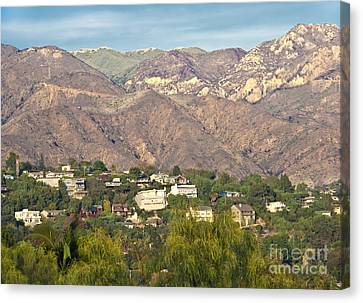 Hilly Residential Area Canvas Print by David Buffington