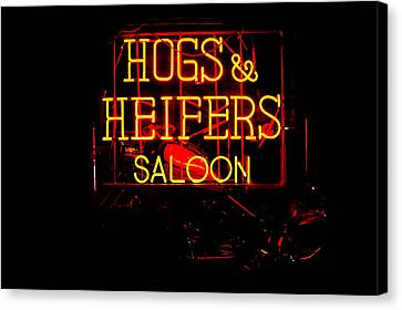 Hogs And Heifers Canvas Print by Bobby Deal