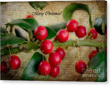 Holly Christmas Canvas Print by Barbara K