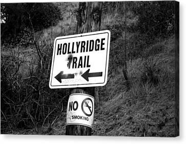 Hollyridge Trail Canvas Print by Jera Sky