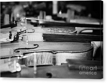 Homemade Handmade Violins Made Of Different Materials And Shape Canvas Print by Joe Fox