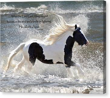 Hooves On The Wind Canvas Print by Terry Kirkland Cook