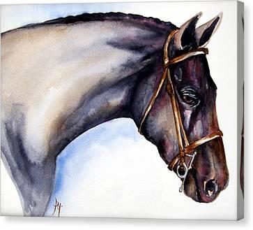 Horse Head 5 Canvas Print by Leyla Munteanu