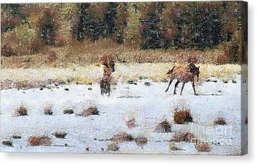 Horses Running Canvas Print by Odon Czintos