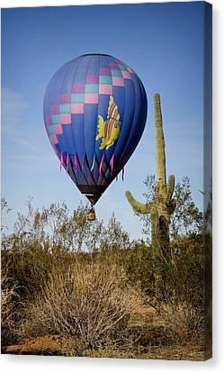 Hot Air Balloon Flight Over The Lush Arizona Desert Canvas Print by James BO  Insogna