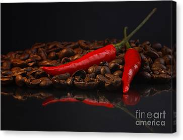 Hot Coffee Canvas Print by Tanja Riedel
