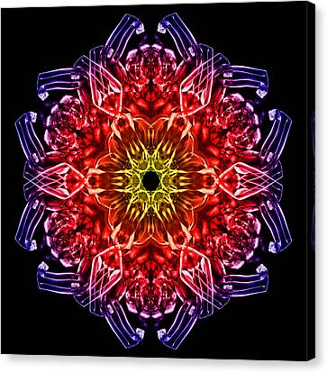 Humandala 2 Canvas Print by David Kleinsasser