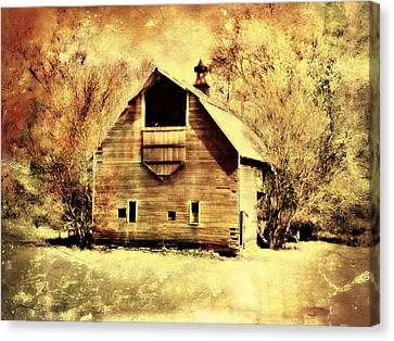 Hwy 20 Barn Canvas Print by Julie Hamilton