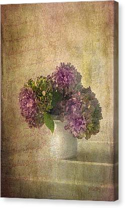 Hydrangea Blossoms Canvas Print by Michael Petrizzo