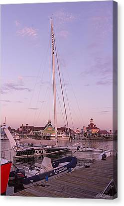 Hydroptere Canvas Print by Heidi Smith