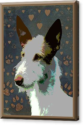 Ibizan Hound Canvas Print by One Rude Dawg Orcutt