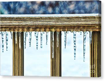 Icicles Canvas Print by HD Connelly