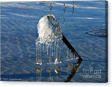 Icy Fence Post Canvas Print by Mitch Shindelbower
