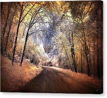 Icy Road Canvas Print by Jai Johnson