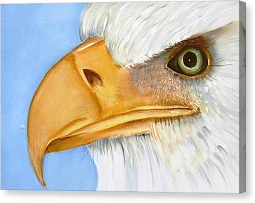 Image 1147b Bold Eagle 1 Canvas Print by Wilma Manhardt