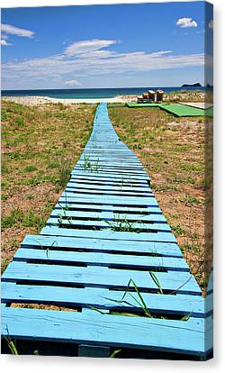 Improvised Boardwalk Canvas Print by Meirion Matthias