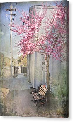 In A Small Town Canvas Print by Laurie Search