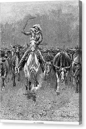 In A Stampede Canvas Print by Granger