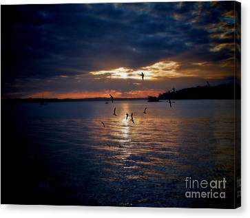 In To The Light Canvas Print by Karen Lewis