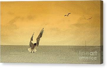 Incoming Canvas Print by Linsey Williams