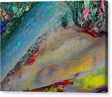 Canvas Print featuring the digital art Inner Peace by Richard Laeton