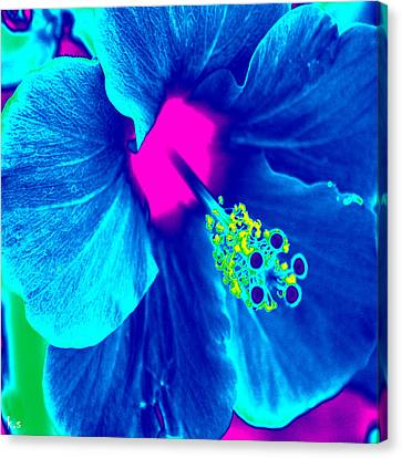 Intimate Blue Canvas Print by Keren Shiker