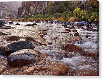 Intimate Waters On The Salt River Canvas Print by Dave Dilli