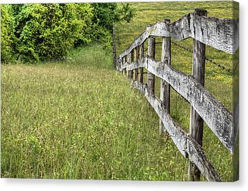 Into The Distance  Canvas Print by JC Findley