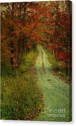 Into The Woods Of Fall Canvas Print by Deborah Benoit