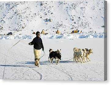 Inuit With Dogs Canvas Print by Louise Murray