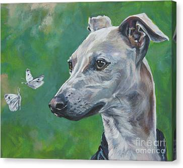 Italian Greyhound With Cabbage White Butterflies Canvas Print by Lee Ann Shepard
