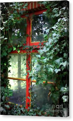 Ivy Embrace Canvas Print by Carol Groenen
