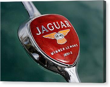 Jaguar Winner Le Mans Canvas Print by Kristan Barnes