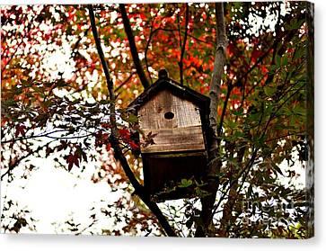 Japanese Garden In Autumn 5 Canvas Print by Dean Harte
