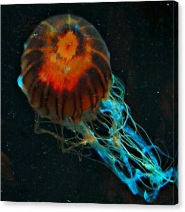 #jellyfish #instadroid #andrography Canvas Print by Kel Hill