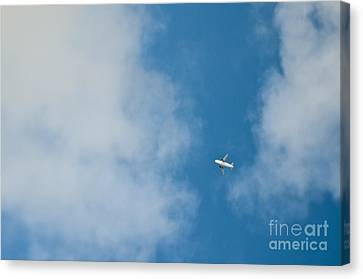 Jet Airplane In Flight Canvas Print by Eddy Joaquim