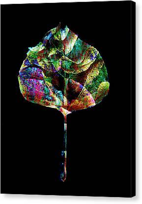 Jewel Tone Leaf Canvas Print by Ann Powell