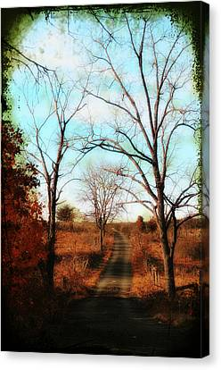 Journey To The Past Canvas Print by Bill Cannon