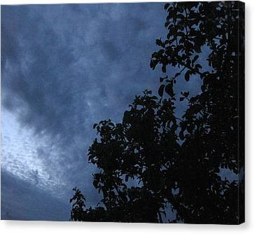 June Apple Trees In The Clouds Canvas Print by Charles Dancik