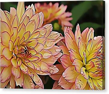 Just Dew Canvas Print by Dorothy Hilde