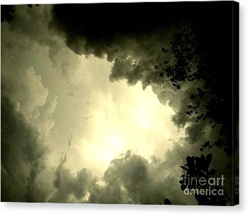 Just Look Up Canvas Print by Kimberly Dawn Hendley