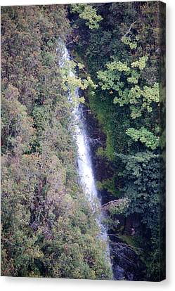 Kahuna Falls Hawaii Canvas Print by Wayne Sheeler