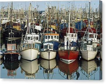 Kilkeel, Co Down, Ireland Rows Of Boats Canvas Print by The Irish Image Collection