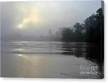 Kinabatangan River At Sunrise Canvas Print by Sami Sarkis