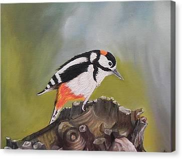 Kingfisher Canvas Print by Usha Rai